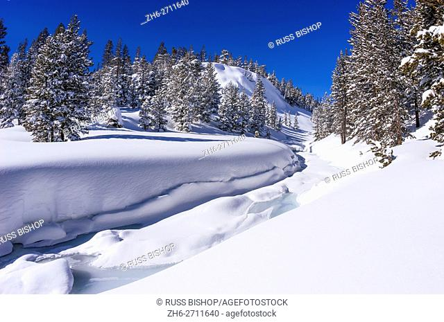 Fresh snow on Lee Vining Creek in winter, Inyo National Forest, Sierra Nevada Mountains, California USA