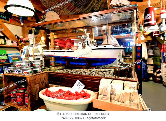 A model of a fishing boat for catching lobsters in the state of Maine in a souvenir shop in Portland (USA), 22 July 2019.   usage worldwide