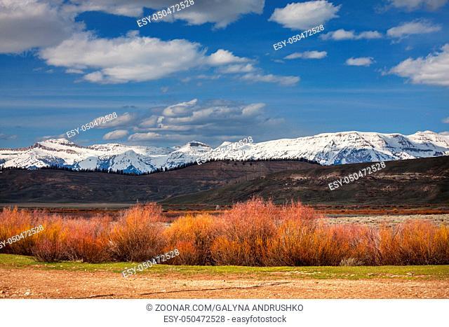 Grand Teton National Park, Wyoming, USA. Instagram filter
