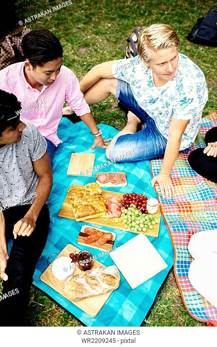 High angle view of friends having food during picnic at park