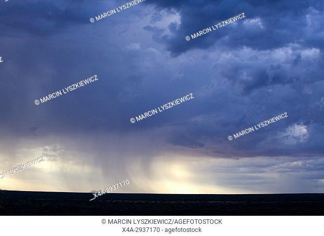 Rain over Okonjima plain, Namibia