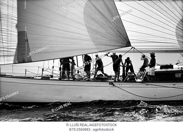 Vintage boat sailing in a regatta with the crew on deck. Port Mahon, Menorca, Biosphere Reserve, Balearic Islands, Spain, Europe