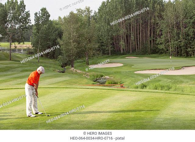 senior male golfer ready to drive golf ball