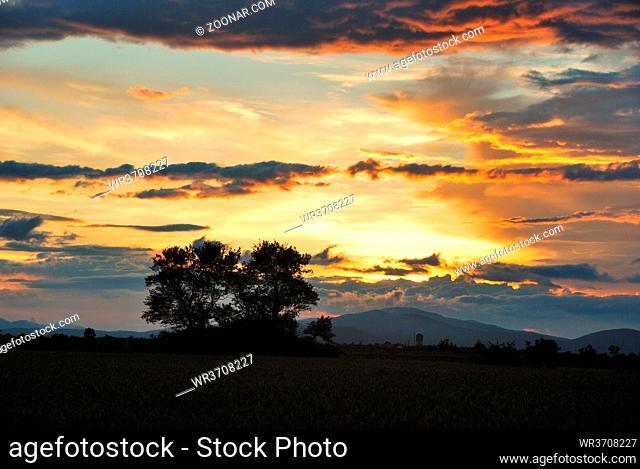 schöner sonnenuntergang mit wolken und baum am feld