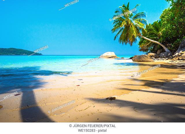 Beach of the Seychelles, Island Mahé, Beach Anse a la Mouche
