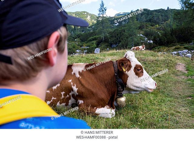 Austrian¶ï, Ausseer Land, Boy watching cow on pasture