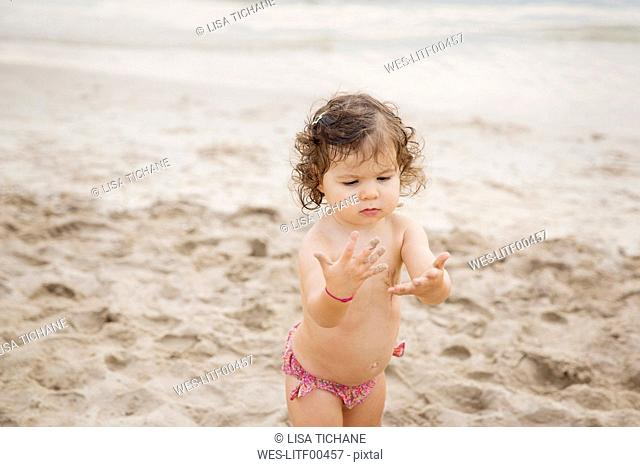 Toddler girl on the beach looking at the sand in her hands