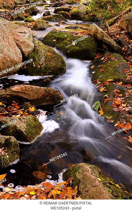 Flowing stream on the Blanchet Trail Gatineau Park in the Fall