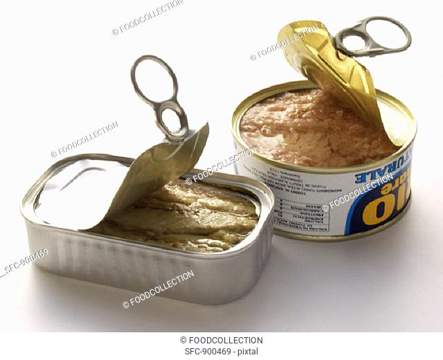 A Can of Tuna and a Can of Sardines