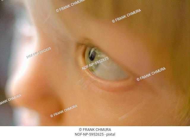 Close-up of a childs green eye