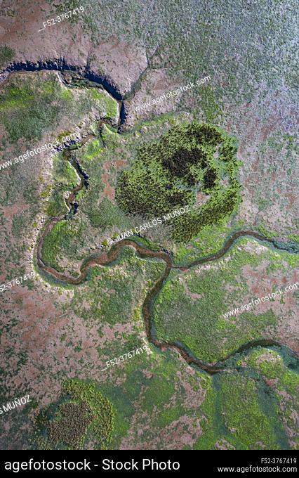 Aerial view at low tide of the Rio del Escudo and Marisma de Rubin, Oyambre Natural Park, San Vicente de la Barquera, Cantabrian Sea, Cantabria, Spain, Europe
