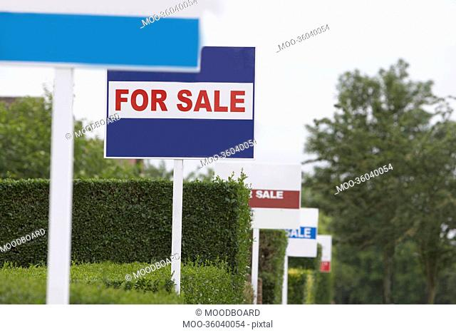 Real estate for sale signs in a row by hedges