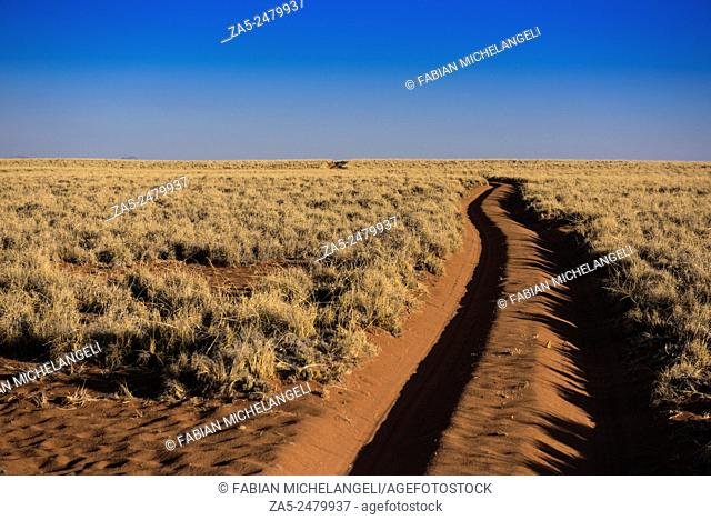 The road to nowhere. Sand trail in the Namib Rand Nature Reserve. Namib Desert, Namibia