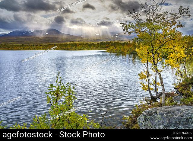 View over lapporten from Njakajaure in autumn season with autumn colored trees, Abisko nationalpark, Swedish Lapland, Sweden