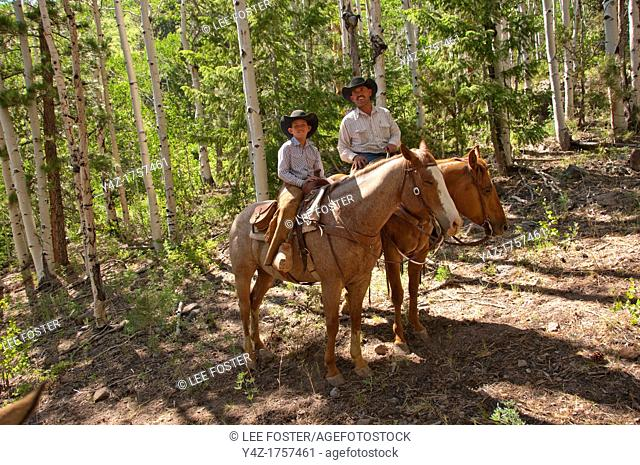 USA, Utah, horseback ride in Escalante with wranglers Jamie Barnson and Cash Barnson through ponderosa pine forest up steep trail to Aquarius Plateau   MR