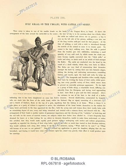 Zulu woman returning from work in the fields. Image taken from The Kafirs illustrated in a series of drawings taken among the Amazulu
