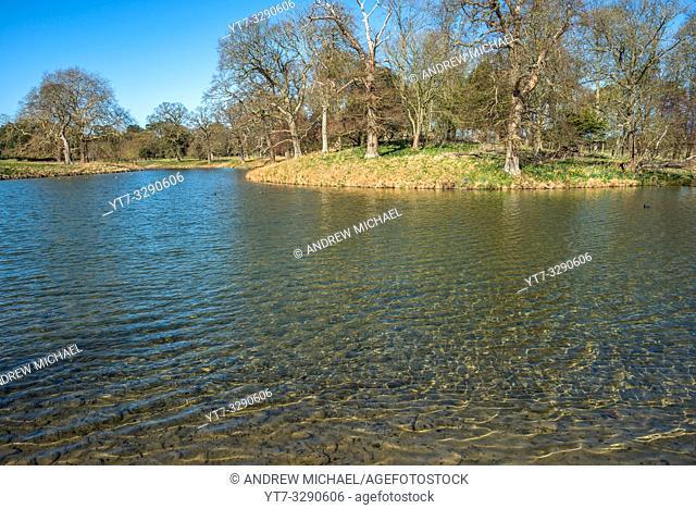 Holkham park lake, Holkham hall in North Norfolk, East Anglia, England, UK