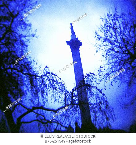 Nelson's Column. Trafalgar Square. London. England