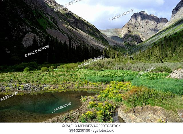 Pond in Kurgak Tor valley, Karakol area, Kyrgyzstan