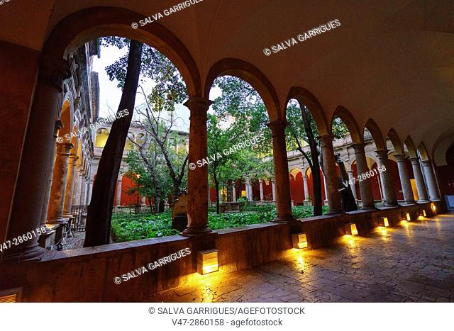 In the old convent of El Carmen, there is the Museum of Fine Arts in Valencia, Centro del Carmen, Valencia, Spain, Europe
