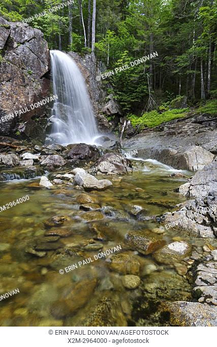 Thirteen Falls along Franconia Brook in the Pemigewasset Wilderness of Franconia, New Hampshire during the summer months