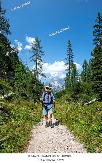 Hiker on hiking trail to Kärlingerhaus, behind Watzmann, Königssee, National Park Berchtesgaden, Berchtesgadener Land, Upper Bavaria, Bavaria, Germany