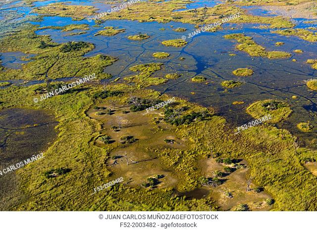 Okavango Delta, Botswana, Africa
