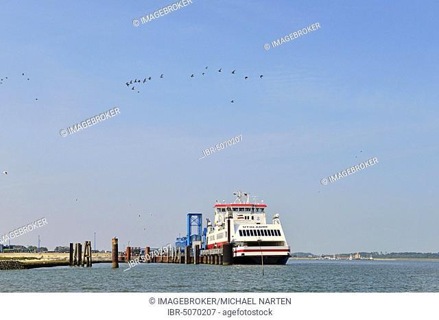Ferry Uthlande at the jetty in Wittdün, Amrum, North Frisian Island, North Frisia, Schleswig-Holstein, Germany, Europe