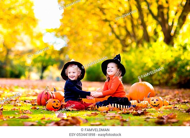 Children in black and orange witch costume and hat play with pumpkin and spider in autumn park on Halloween. Kids trick or treat
