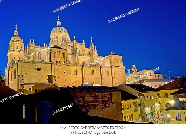 New Cathedral of Salamanca, Cathedral of the Asunción de María, Gothic Renaissance Baroque Style,16th-18th century, Spanish Property of Cultural Interest