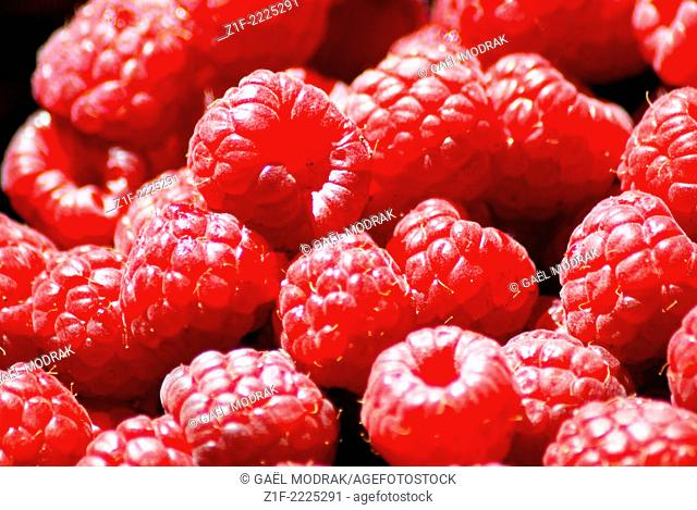 Close-up on sweet pink colored raspberries