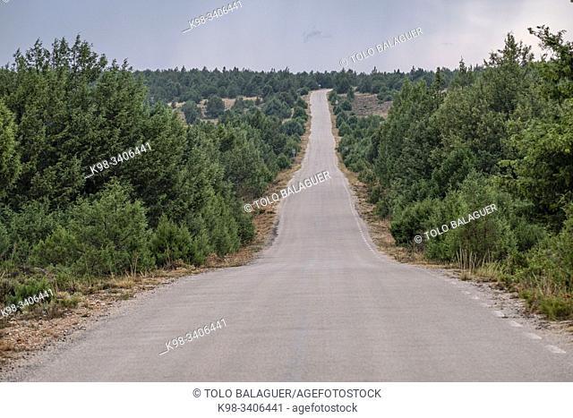 Sierra Solorio, Soria, comunidad autónoma de Castilla y León, Spain, Europe