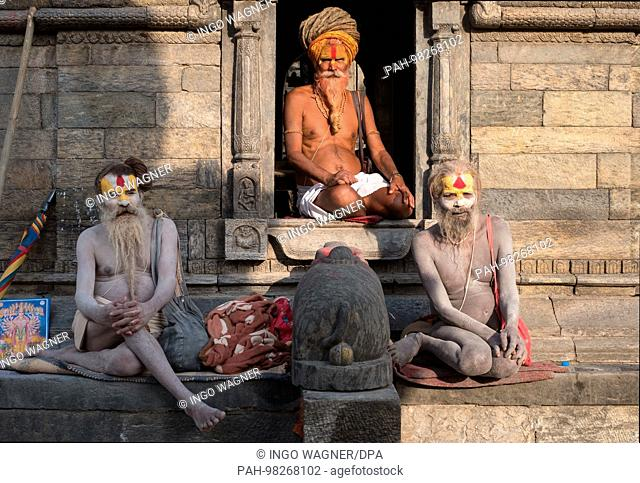 At the Hindu Shrine, the Shiva Temple of Pashupatinath in the east of the Nepali capital Kathmandu. | usage worldwide. - Kathmandu/Nepal