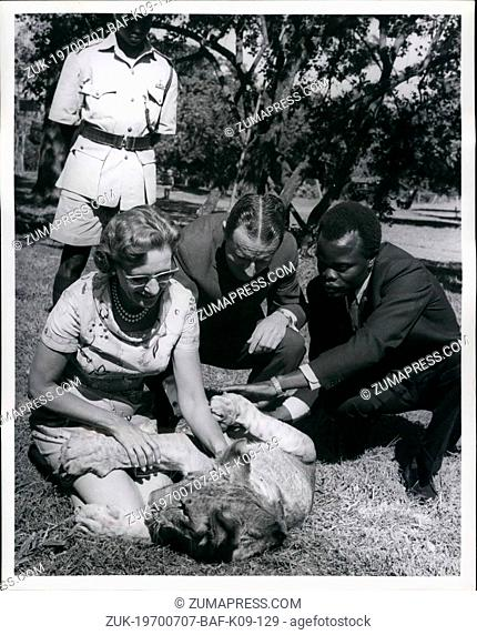 Jul. 07, 1970 - Lion Cub presented to Mr. & Mrs. Raymond C. Firestone by Kenya Government: Pictures taken at Nairobi Animal Orphanage today when a 8 month old...