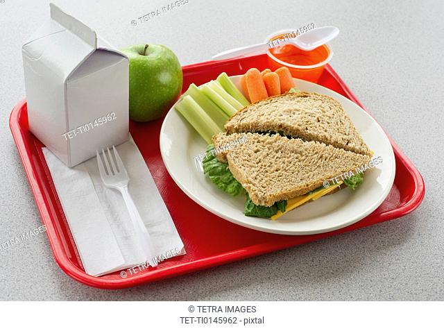 School lunch on tray