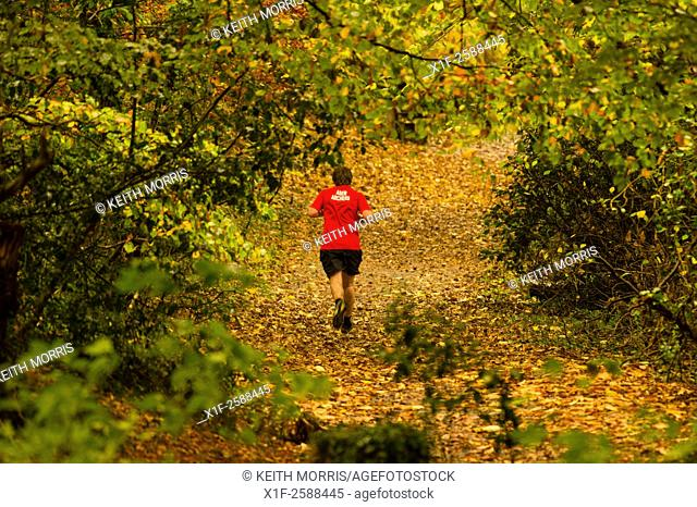 Aberystwyth Wales UK, Thursday 05 November 2015. . UK weather: On a damp and overcast day, a young man runs along the leaf-covered footpath in Penglais Park...