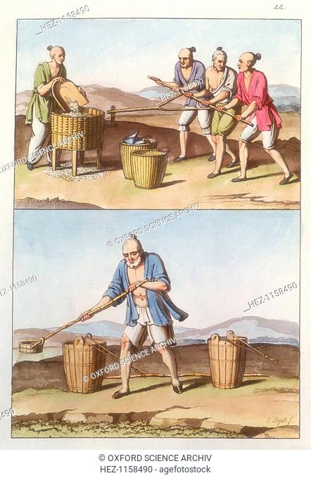 Chinese agriculture, 1825-1835. Top: Husking rice. One person puts grain into a husker while three men move the crank mechanism