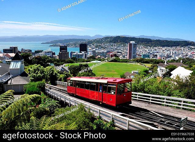 skyline of Wellington, New Zealand