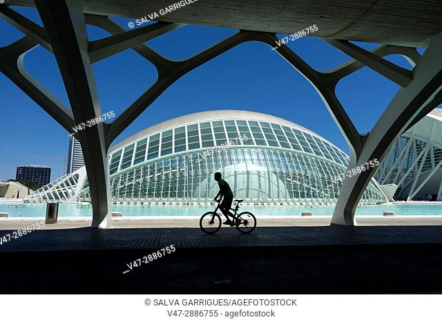 Silhouette of a cyclist in front of the Hemisferic of the City of Arts and Sciences, Valencia, Spain