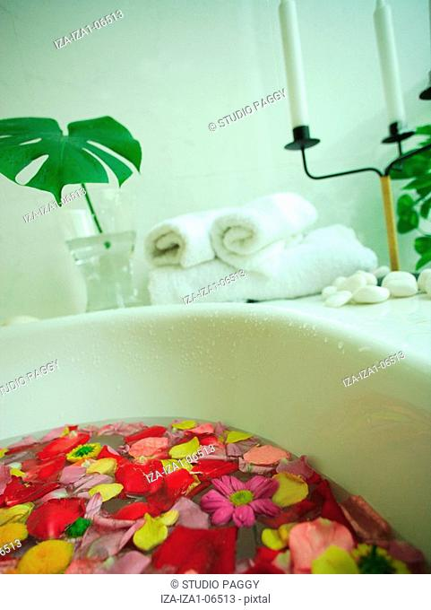 High angle view of flower petals floating in a bathtub