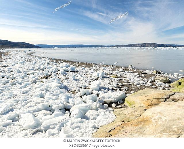 Shoreline littered with icebergs from Eqip Glacier (Eqip Sermia or Eqi Glacier) in Greenland. Polar Regions, Denmark, August