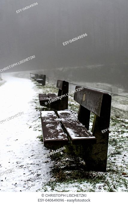 Bench empty seat in the wood trees winter and fog 8