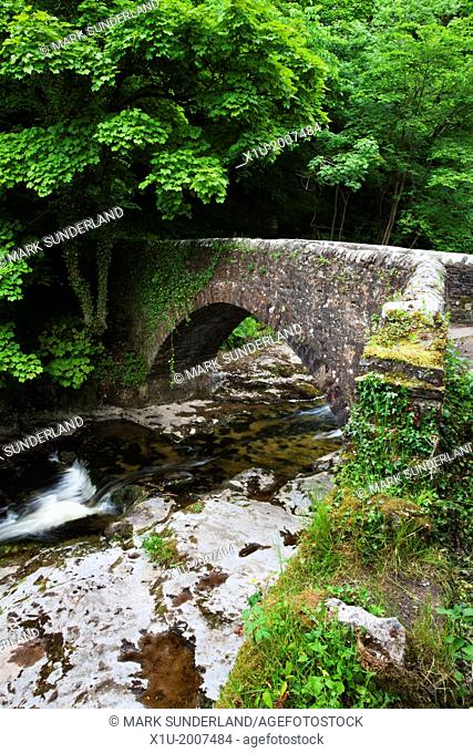 Stone Bridge over Walden Beck at West Burton Wensleydale Yorkshire Dales England