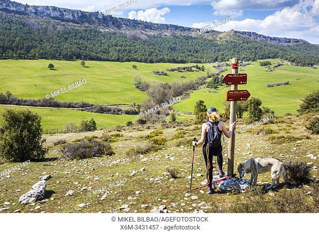 Woman hiker in a signs. Desfiladero del Rio Puron route. Valderejo Natural Park, Alava, Spain, Europe