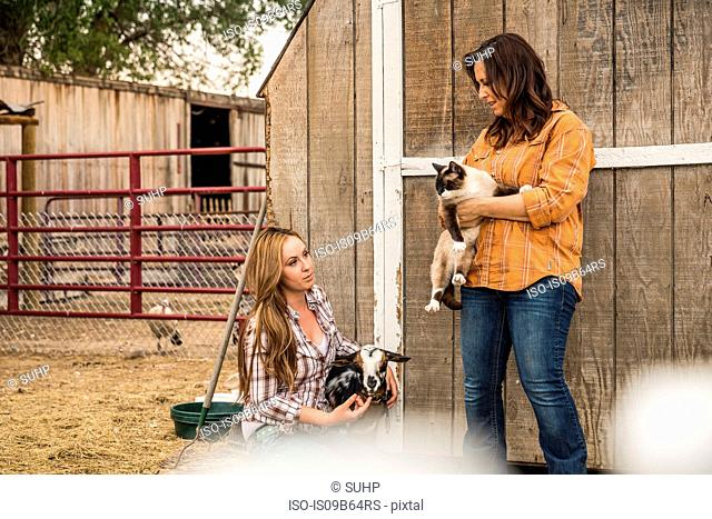 Young woman and mother holding a goat and cat on ranch fence, Bridger, Montana, USA