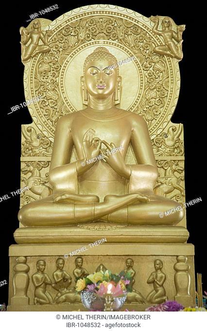 Golden Buddha statue, Mulagandha Kuti Vihara Buddhist temple, Sarnath, Uttar Pradesh, India, South Asia
