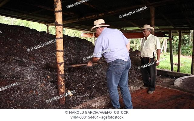 Workers handling the pulp of coffee, environmental action more important in the benefit of the land. At this stage it generates the most negative environmental...
