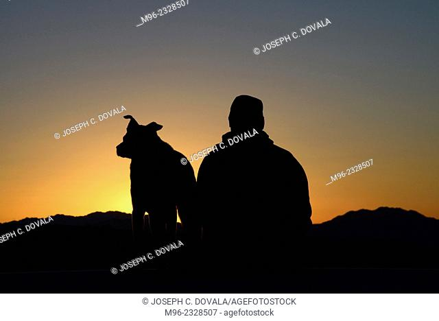 Dog and master watching sunrise, Mojave Desert, California, USA, MR