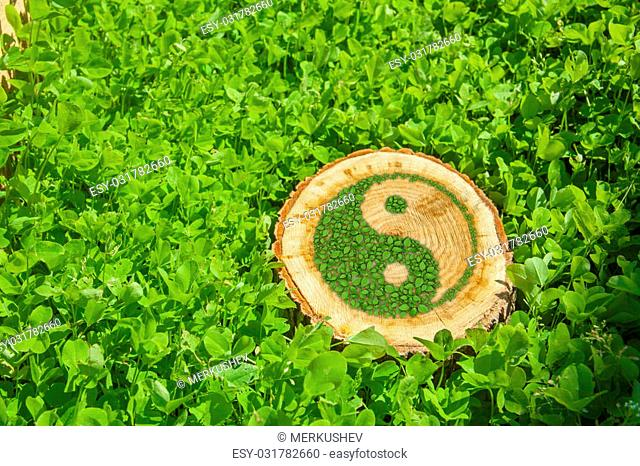 Tree stump on the grass with green ying yang symbol