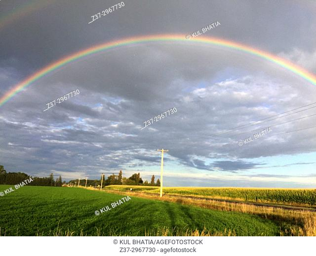 A rainbow across fields of soyabeans, Ontario, Canada. There's a faint second rainbow also
